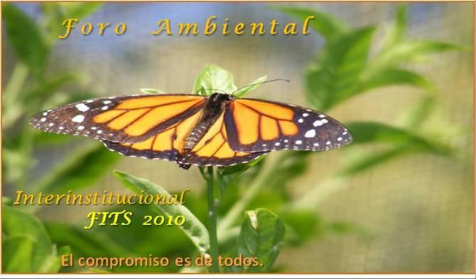 BIENVENIDOS FORO INTERINSTITUCIONAL FITS 2010